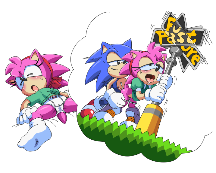 amy rose sonic the hedgehog The witch left 4 dead